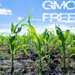 Learn how to buy non-GMO products at nongmoshoppingguide.com