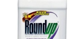 Is Roundup the Cause of 'Gluten Intolerance'?