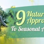 9 Natural Approaches To Seasonal Allergies