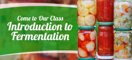 Come to Our Class Introduction to Fermentation