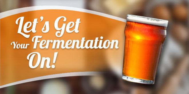 Let's Get Your Fermentation ON!