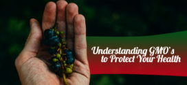 Why You Must Understand GMO's to Protect Your Health