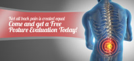 Not all back pain is created equal – Come and get a Free Posture Evaluation Today!