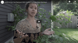 Olivia Cleveland, certified herbalist, herbs in backyard thumbnail