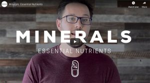 Essential Nutrition Supplements: Minerals Thumbnail